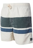 "Rip Curl Volley Revolve 16"" Boardshorts"