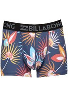 Billabong Ron Boxershorts