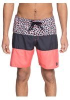 Dc Hot Blocked 18 Boardshorts