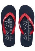 Animal Costaz Logo Sandals