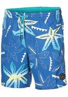 O'neill Long Vert Art Boardshorts