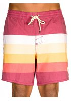 O'neill Horizon Boardshorts
