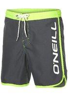 O'neill Frame Logo Boardshorts
