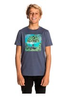 Rip Curl Good Day T-shirt Boys