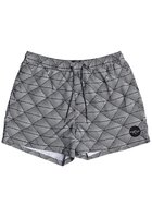 """Quiksilver Static Island Volley 15"""" Boardshorts"""